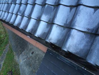 前回の雨樋交換工事がとてもよかったので今回は雨樋掃除をお願いしました。